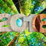 2016 - belle carte de voeux nature